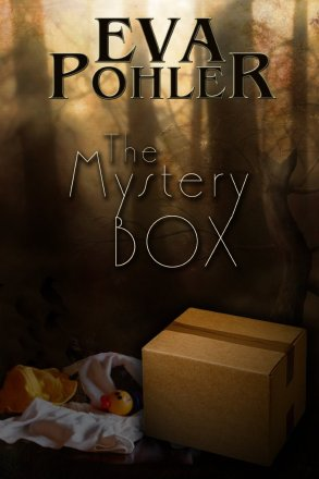 The Mystery Box by Eva Pohler available free for limited time on Nook and Kindle