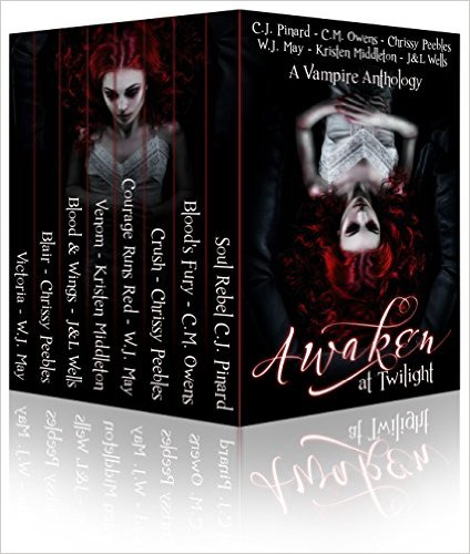 Awaken at Twilight by 8 bestselling authors available free for limited time on Nook and Kindle