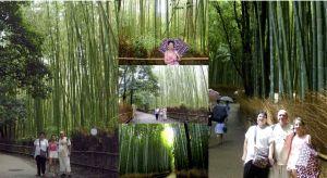 Shiatsu Master en Japón, Chikurin-no-Michi (Camino de bambú)