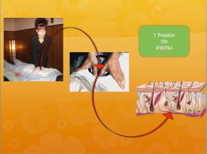 Shiatsu Presion Efectos Sobre el Organismo b