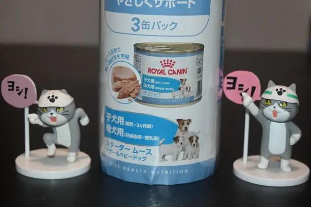 ロイヤルカナンの缶詰と仕事猫のフィギュア