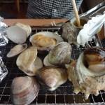 テレビで話題!漁師料理「かなや」で貝焼食べ放題を食べてきました!牡蠣美味すぎ~!