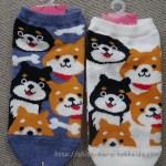 「チュチュアンナ」の柴犬靴下が可愛すぎたので買いまくってみた!
