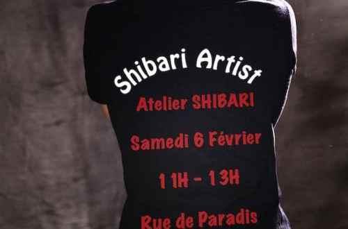 Atelier shibari / apprendre le shibari / Workshop shibari Paris / Seb Kinbaku