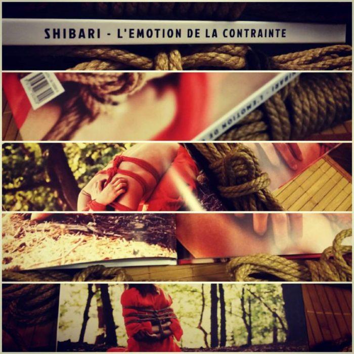 shibari kinbaku book