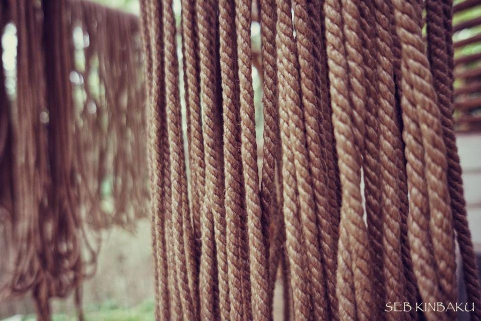 cordes shibari kinbaku jute