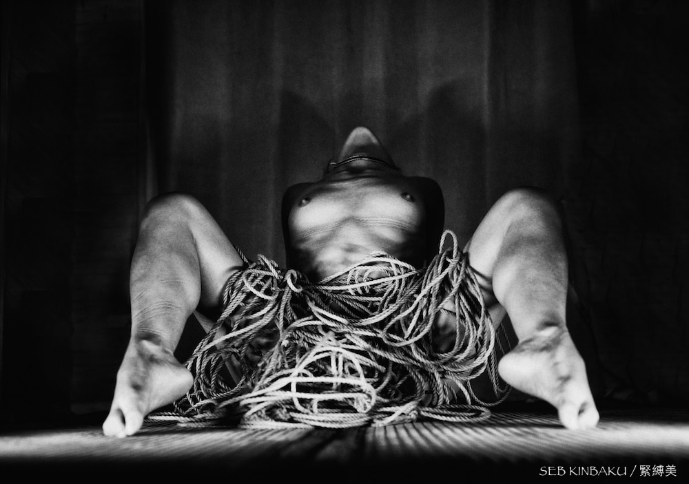 corde shibari : Malice kinbaku