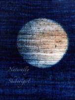 Watermarked Photo (2015-10-16-1846)