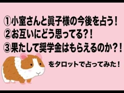 小室さんと眞子様の今後を占ってみた😲果たして奨学金はもらえるのか?!【タロット占い】