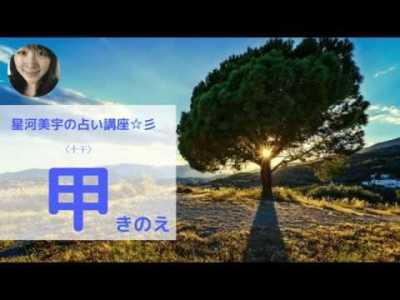 【十干の解説】甲(きのえ)の性格・特徴・長所・短所・開運方法