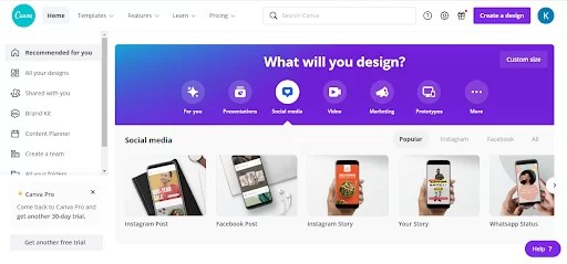canva one of the best marketing tools for online vegan businesses