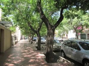 Propositions pour le plan directeur routier de Mendoza