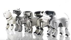 Sony'den yeni robot köpek yakında geliyor!