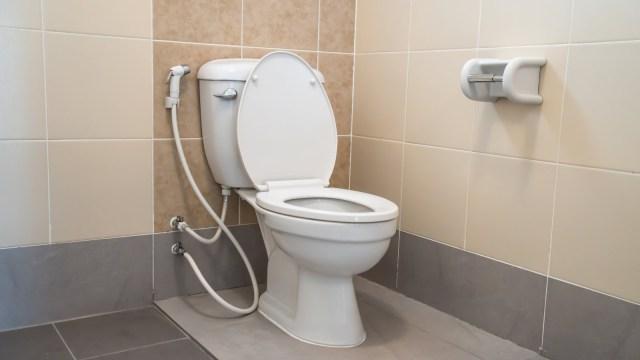 tuvalet bulucu en yakın tuvalet