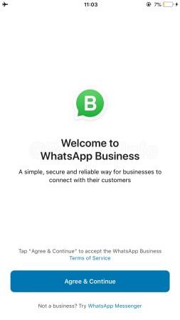 WhatsApp Business iOS
