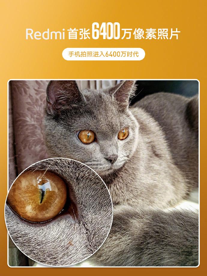 Redmi 64 MP kameralı telefon ile çekilen fotoğrafla gündemde! - ShiftDelete.Net