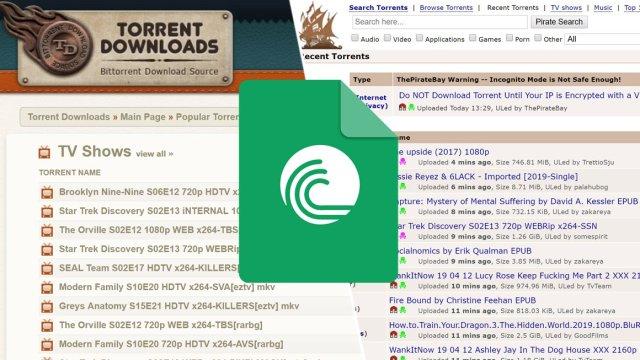 En iyi torrent siteleri 2020 - En popüler torrent siteleri