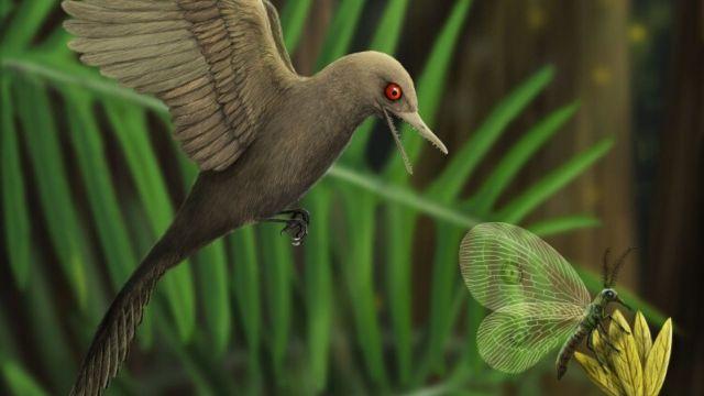 99 milyon yıl korunmuş dinozor fosili!