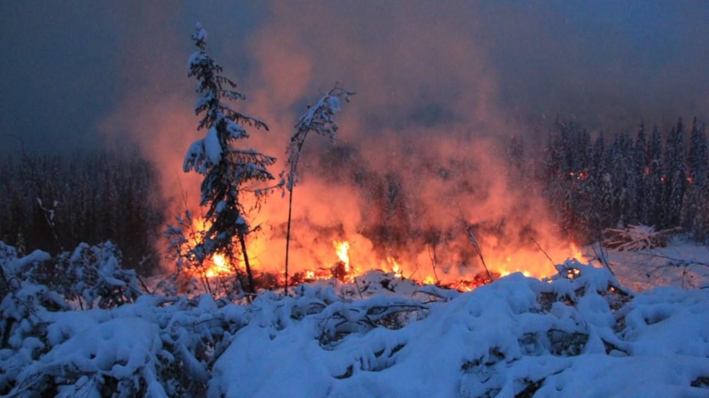 Kuzey Kutbunda zombi yangınları her yıl artarak devam ediyor.