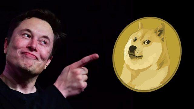 Elon Musk'tan yeni Tesla ve Dogecoin anketi