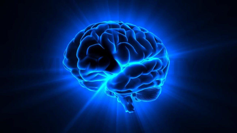 İnsan beyni kaç GB