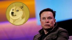 Elon Musk üzgün: Solana, Dogecoin'i geride bıraktı