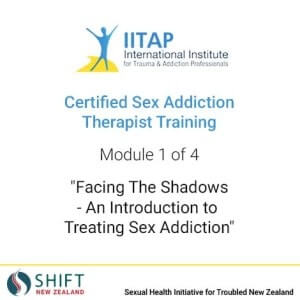 Certified Sex Addiction Therapy Training with iitap