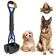cleaning up after your shih tzu
