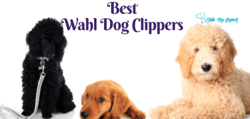 Best Wahl Dog Clippers