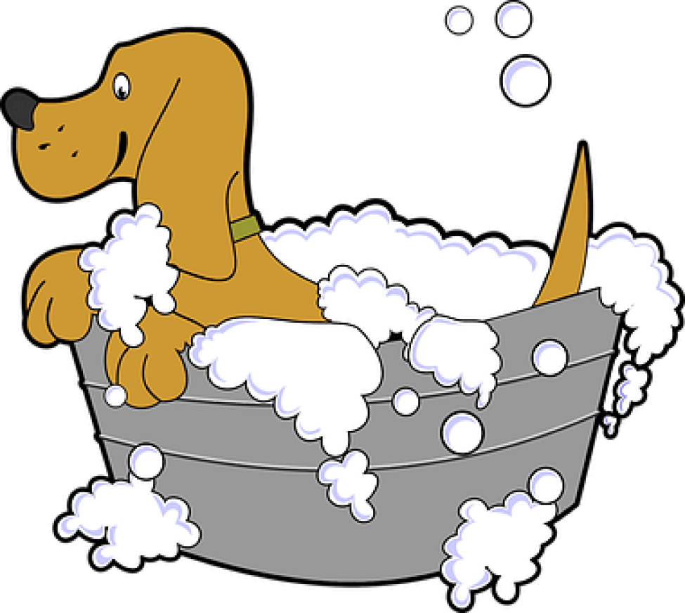 So what should I look for, when I'm looking at dog grooming tubs?