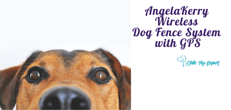 AngelaKerry Wireless Dog Fence System with GPS, Outdoor Pet Containment System