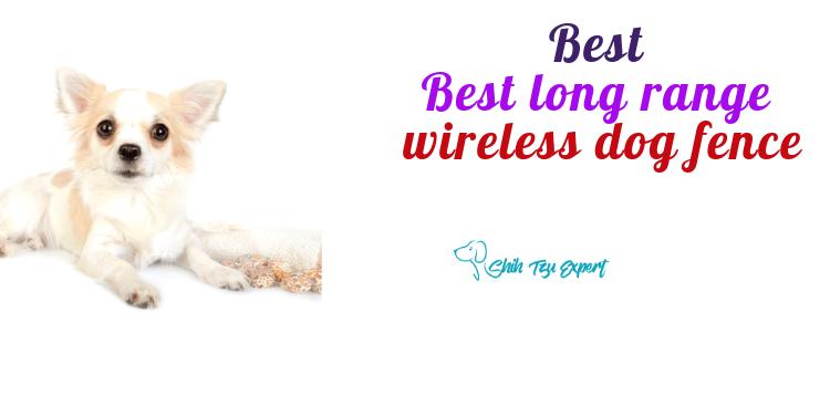 Best Long Range Wireless Dog Fence