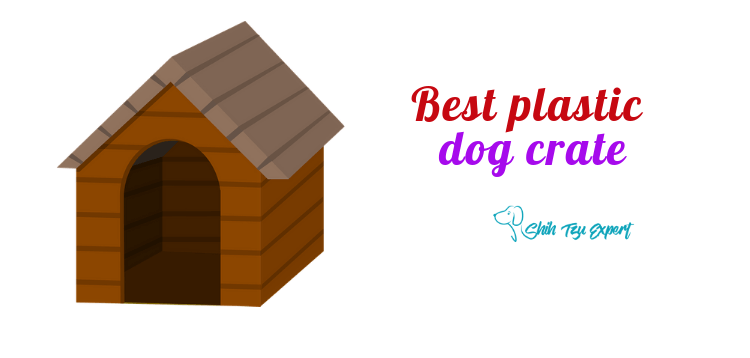 Best plastic dog crate For Safety + Travel + Everyday Use
