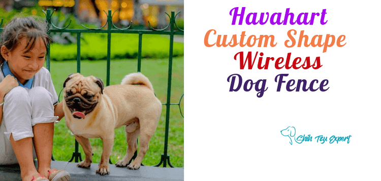 Havahart Custom Shape Wireless Dog Fence