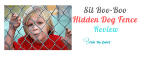Sit Boo-Boo Hidden Dog Fence Review