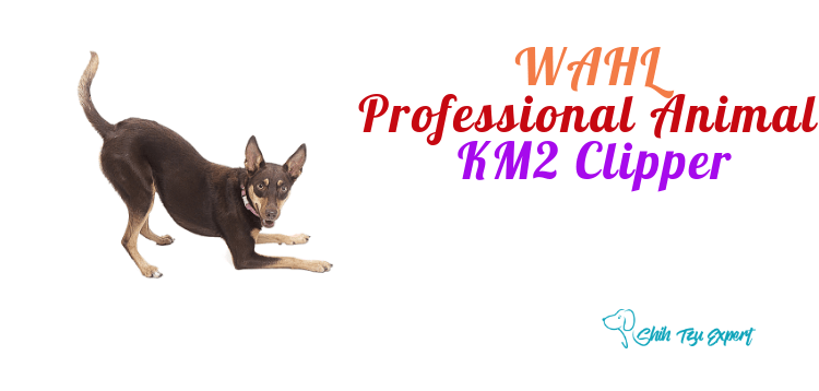 WAHL Professional Animal KM2