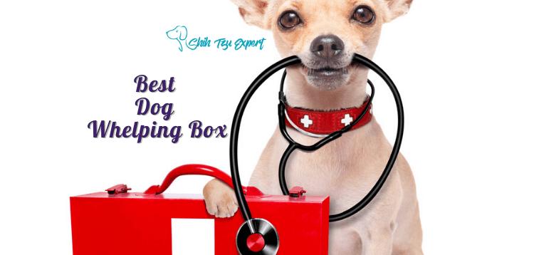 Best Dog Whelping Box (1)