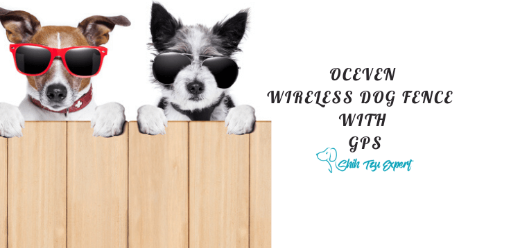 OCEVEN WIRELESS DOG FENCE SYSTEM WITH GPS (1)