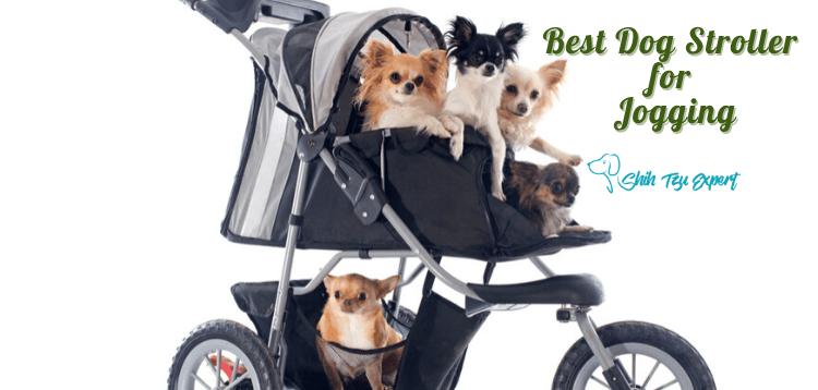 The Best Dog Stroller for Jogging (1)