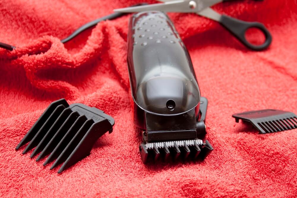 DOG HAIR CLIPPER AND BLADES BUYING GUIDE FOR YOUR SHIH TZU