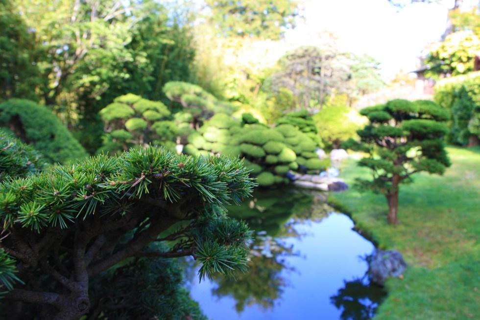 japanese tea gardens sf