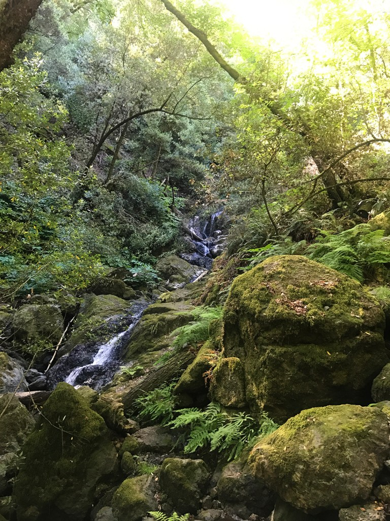 Day Trip: Hike Cataract Falls Trail