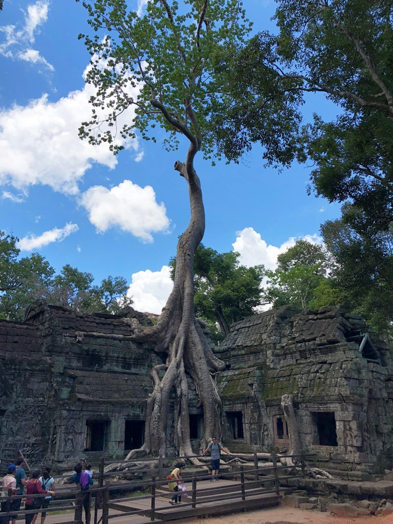 One Week in Cambodia: Travel Guide