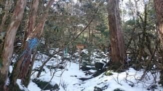mt shiraga shiragayama kochi motoyama hiking (2)