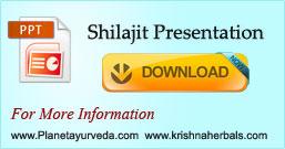 Shilajit Presentation