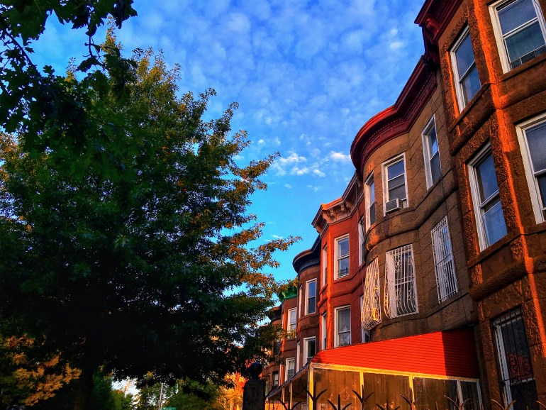 Ocean Hill Brooklyn Houses NYC NYC tourist traps