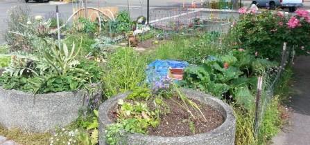 Garden at M5