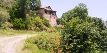 DhamiBg