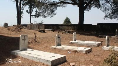 Cemetery in Dagshai