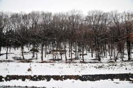 杓子山(明神山)中央付近